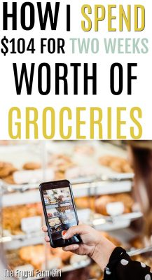 how to spend-less-groceries-week-$100-under