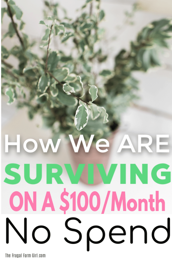 surviving on a $100 month no spend challenge 2019