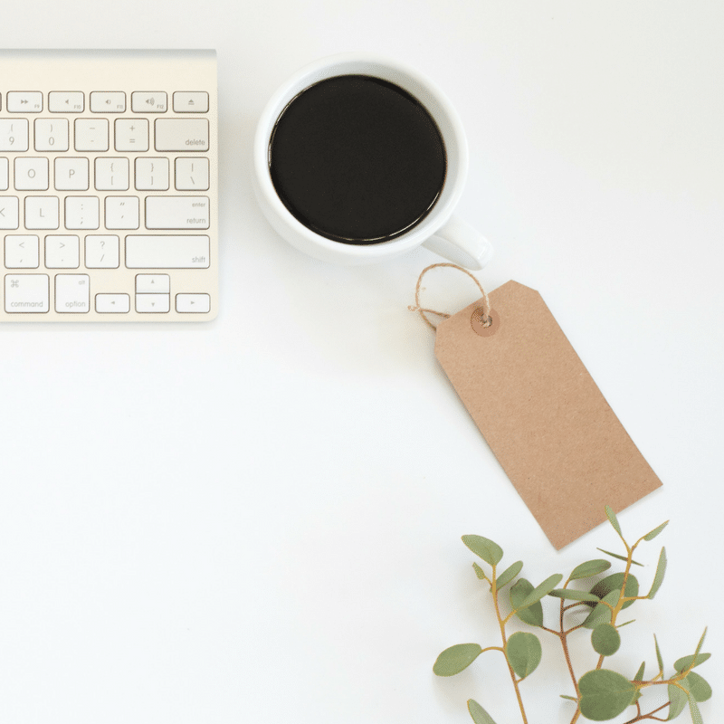 How I Made $338 in My 5th Month Blogging