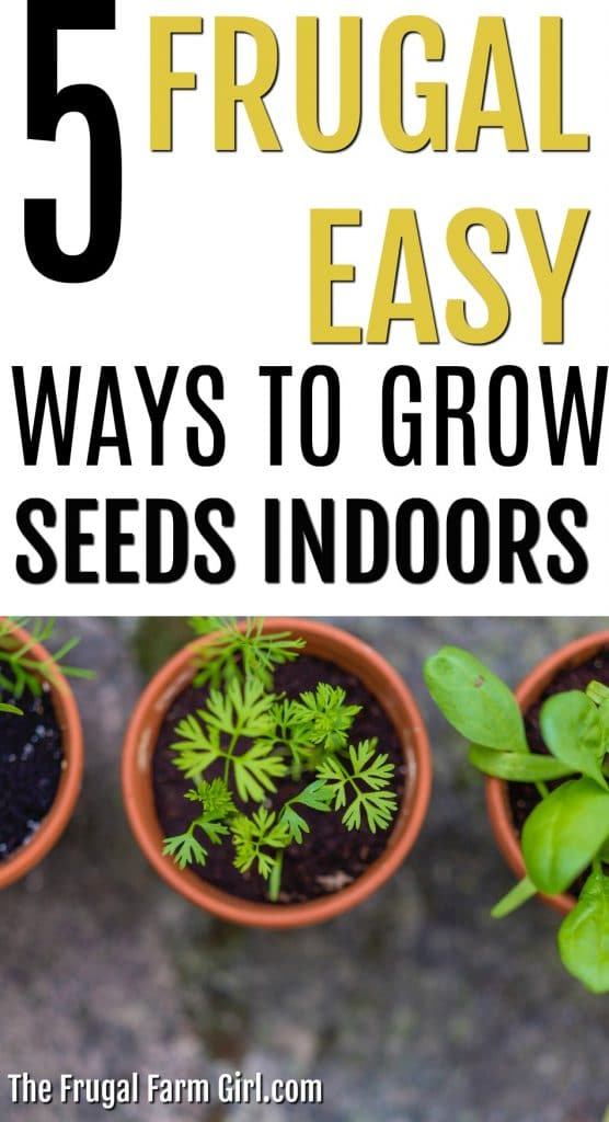Save cash and grow healthy, affordable plants indoors or transplant outside. Use what you have like egg cartons, cups and DIY your indoor seed containers after reading this article. #seeds #indoor #frugal #veggies #cups #soil #how #DIY #garden