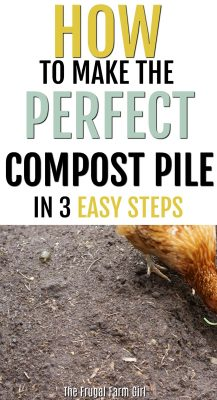how-to-compost-for-beginners