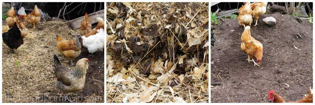compost pile 3 easy steps