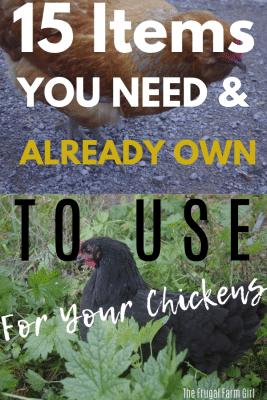 Frugal house hold items to use for your chickens