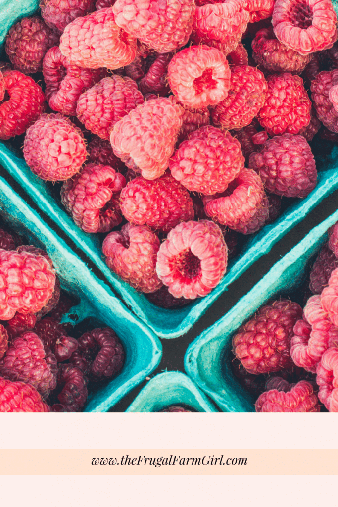 10 Things You Didn't Know About Growing Raspberries