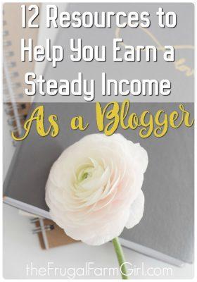 earn a steady income as a blogger