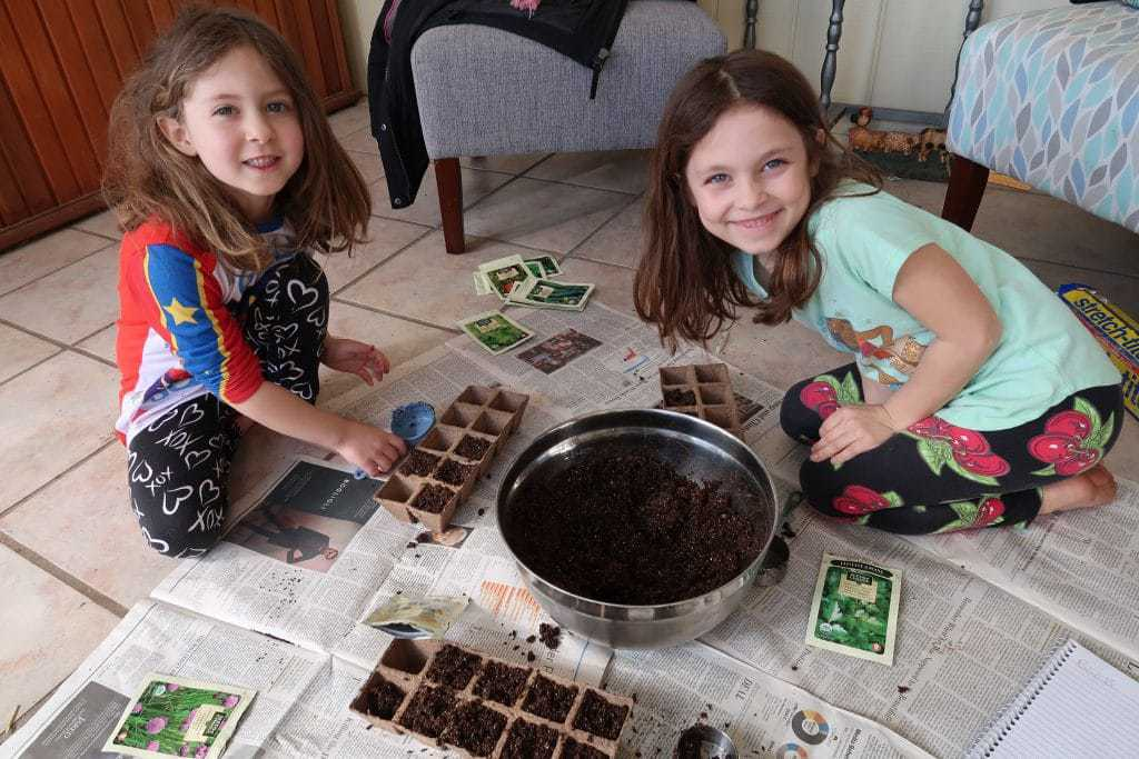 start-seeds-indoors-save-money