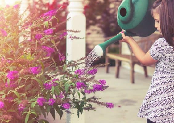 gardening fun with kids tips