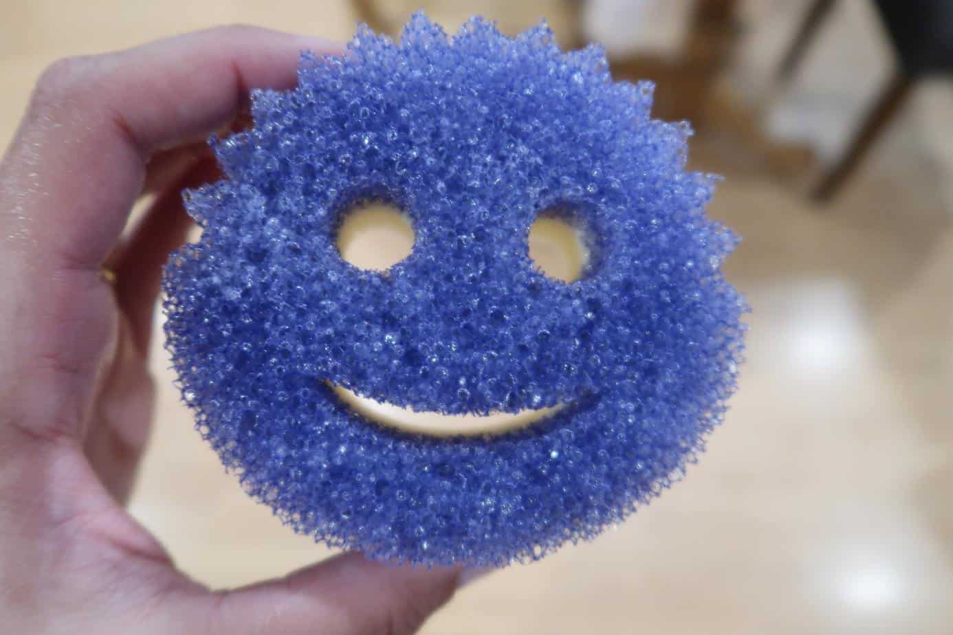 scrub-mommy-scrub-daddy-sponge-daddy-reviews