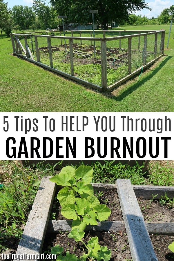 how to keep going with your garden