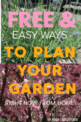 free and eassy way to design your garden