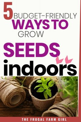 how to start seeds indoors and save money