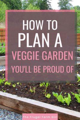 plan a veggie garden