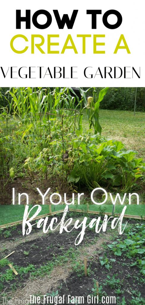 tips to start our vegetable garden in backyard