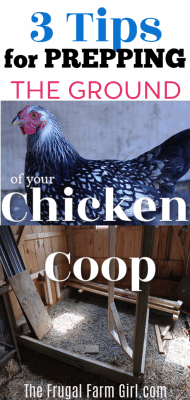 prepping ground chicken coop