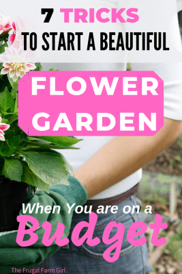 tips to start a flower garden budget