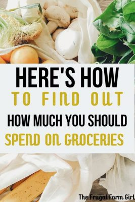how to figure out your grocery budget