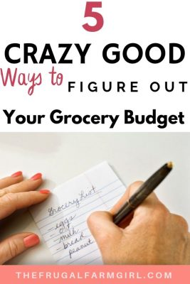 grocery budget calculator