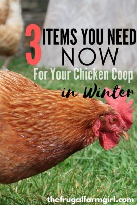 items you need for chicken coop in winter