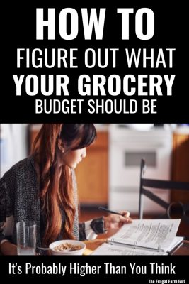 figure out what grocery budget should be