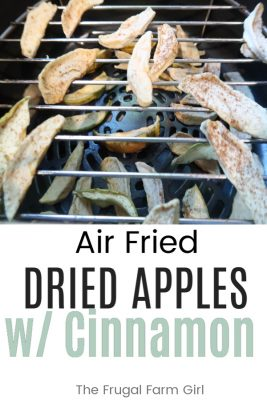 air fried dried apples