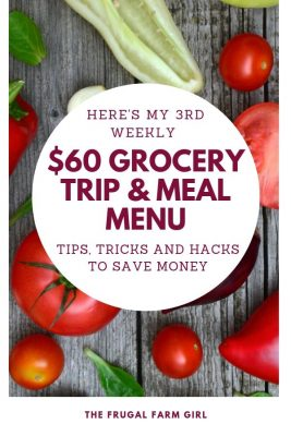 grocery trip meal menu and tips