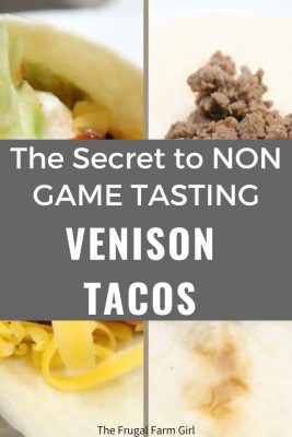 non game tasting venison tacos