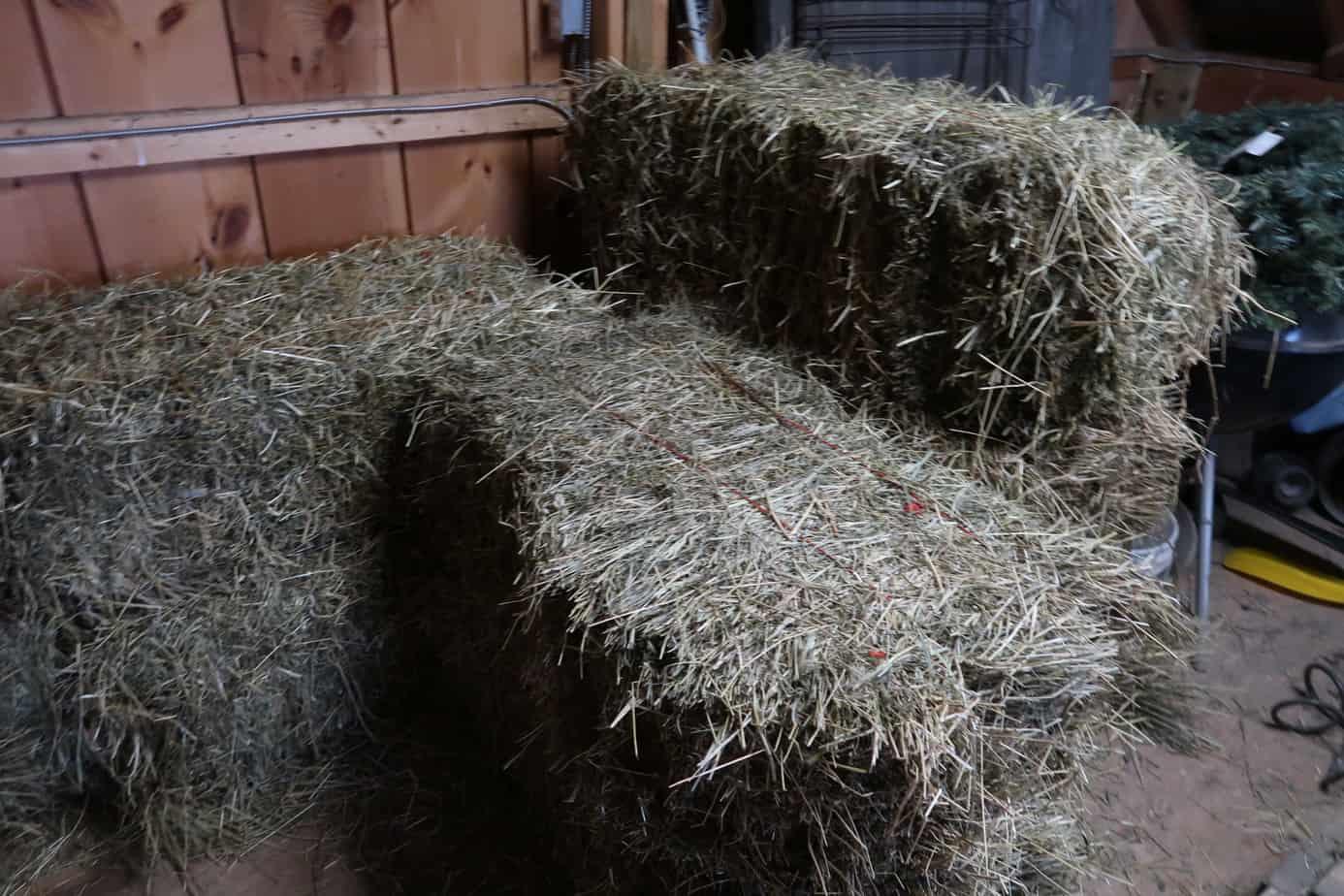 ways to cut hay bill in half