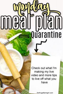 meal planning during quarantine