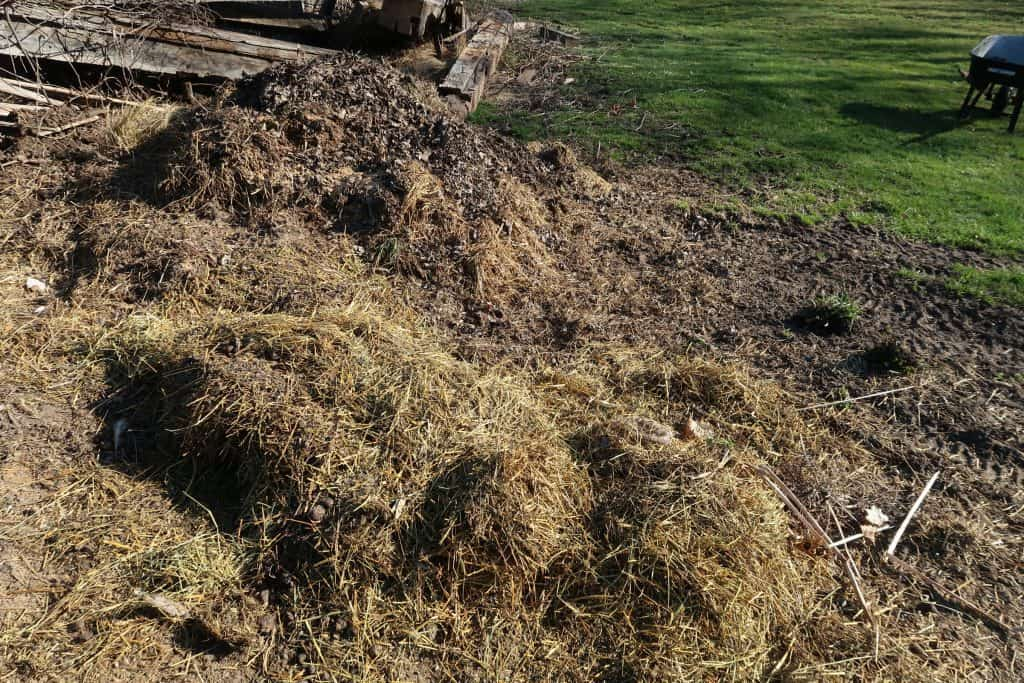 7 of the Worst Possible Things to Compost