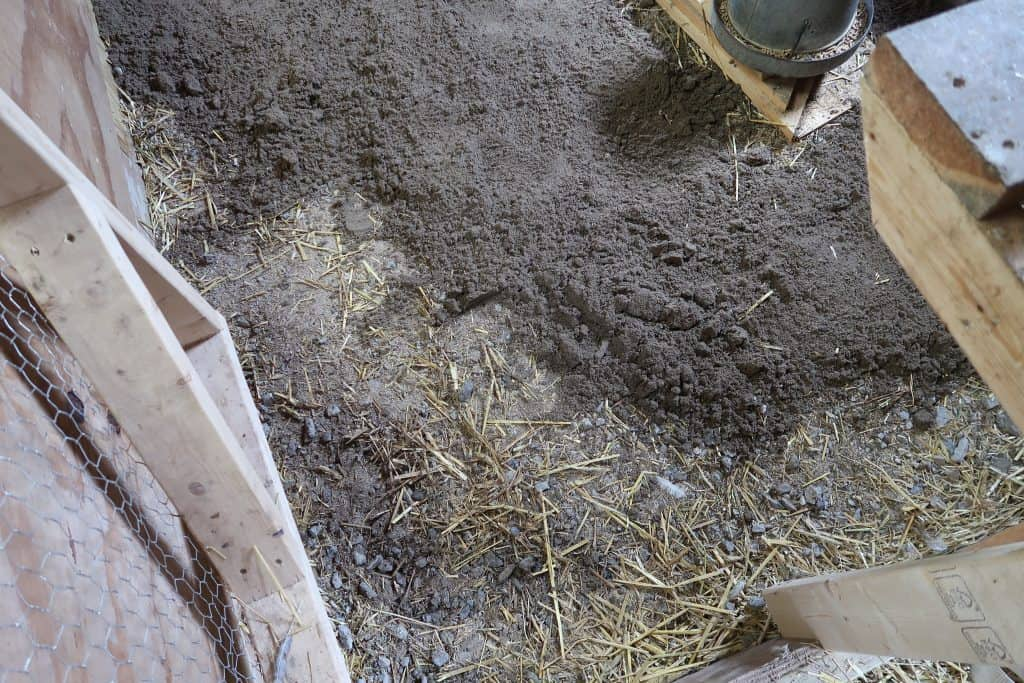 Why Sand is The Best Choice for Your Chicken Coop