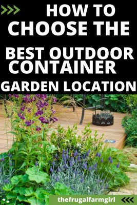 best location for container gardens