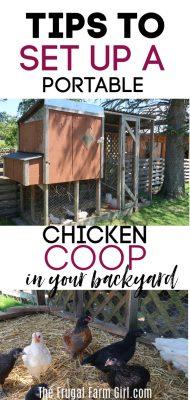 portable chicken coop tips