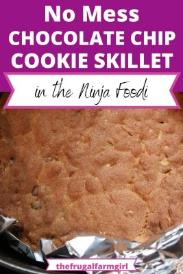 easy chocolate chip cookie skillet recipe