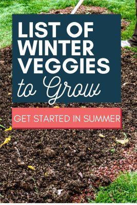 cold weather crops to grow in winter
