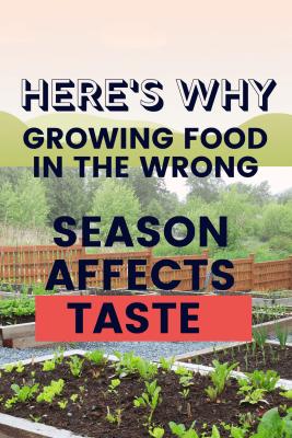 growing vegetables in the wrong season