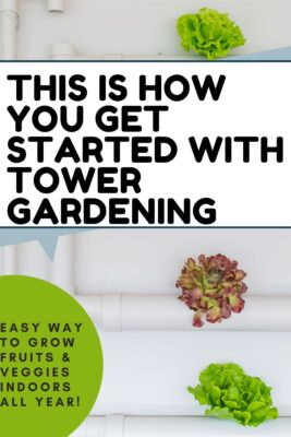 guide to tower gardening