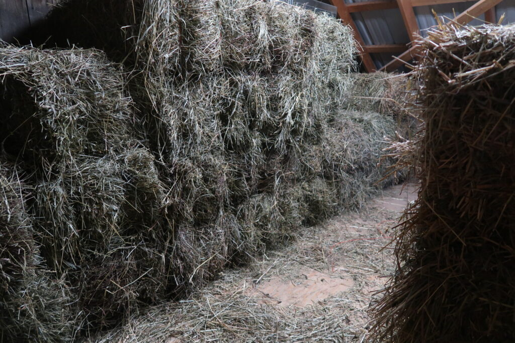 20 Ways to Get your Homestead Ready For Winter