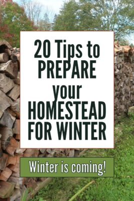 how to prepare homestead for winter